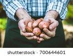 organic vegetables. farmers... | Shutterstock . vector #700644601
