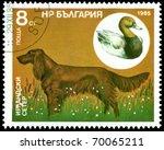 bulgaria   circa 1985  a stamp... | Shutterstock . vector #70065211