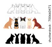 set of chihuahua group | Shutterstock .eps vector #700660471
