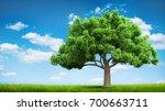 tree and summer green field... | Shutterstock . vector #700663711