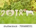 shot of an adorable wire fox... | Shutterstock . vector #700688551