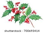 Branch Mistletoe Isolated On...