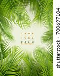 tropical palm background.... | Shutterstock .eps vector #700697104