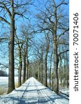 path on winter time - stock photo
