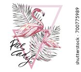 word  paradise. two flamingos... | Shutterstock .eps vector #700775989
