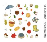 autumn objects set hand drawn... | Shutterstock .eps vector #700804111