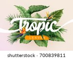 bright tropical background with ... | Shutterstock .eps vector #700839811