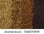 texture with 4 types of barley... | Shutterstock . vector #700870909