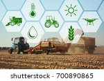 icons and process of harvesting ... | Shutterstock . vector #700890865