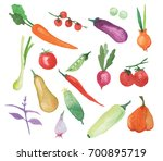 watercolor vegetables set... | Shutterstock . vector #700895719