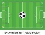football field vector | Shutterstock .eps vector #700959304