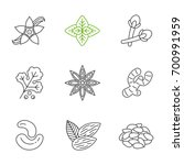 spices linear icons set. thin... | Shutterstock .eps vector #700991959