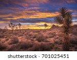 the sky erupts in color during...   Shutterstock . vector #701025451