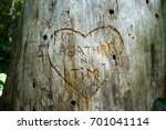carved sweetheart's name in a... | Shutterstock . vector #701041114