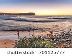 Sunrise Seascape With Aloe Ver...