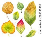 Fall Leaves. Autumn Season...
