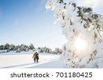 couple in love walking in... | Shutterstock . vector #701180425