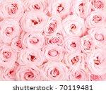 Stock photo pink fresh roses background 70119481