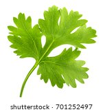 green cilantro  parsley... | Shutterstock . vector #701252497
