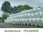 bales of hay wrapped in white... | Shutterstock . vector #701260405