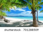tropical palms beach | Shutterstock . vector #701288509
