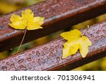 autumn maple leaves on a wooden ... | Shutterstock . vector #701306941