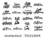 autumn hand written lettering... | Shutterstock .eps vector #701313049