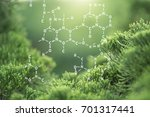 plants background with... | Shutterstock . vector #701317441