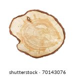 Tree Stump Isolated On White...