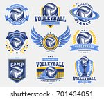 volleyball logo  emblem set... | Shutterstock .eps vector #701434051