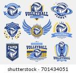 volleyball logo  emblem set...