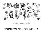 black and white vector set of... | Shutterstock .eps vector #701434615