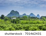 countryside scenery with blue... | Shutterstock . vector #701462431