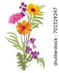 bouquet of gerbera daisy ... | Shutterstock .eps vector #701529247
