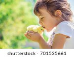 the child holds a chicken in... | Shutterstock . vector #701535661