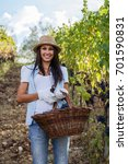 young woman in vineyard with a... | Shutterstock . vector #701590831