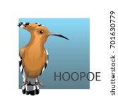 Eurasian Hoopoe Or Common...