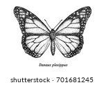monarch butterfly illustration  ... | Shutterstock .eps vector #701681245