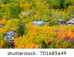 Valley Of Autumn Trees In...