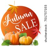 autumn sale button | Shutterstock .eps vector #701757355