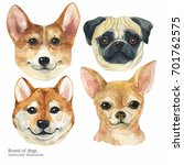 portrait cute dog set isolated... | Shutterstock . vector #701762575