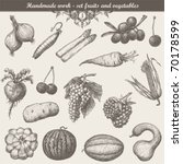 handmade work   set fruits and... | Shutterstock .eps vector #70178599