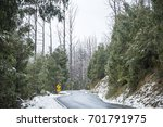 snow on trees and road in... | Shutterstock . vector #701791975