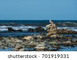 seagull on the beach | Shutterstock . vector #701919331