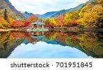naejangsan korea   november 1 ...   Shutterstock . vector #701951845
