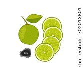 hand drawn sketch style lime... | Shutterstock .eps vector #702013801