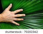A Man's Hand Resting On A...