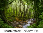 tropical jungle | Shutterstock . vector #702094741