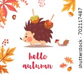 hello autumn cute card with... | Shutterstock .eps vector #702117487