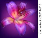 vector photo realistic purple... | Shutterstock .eps vector #702144715